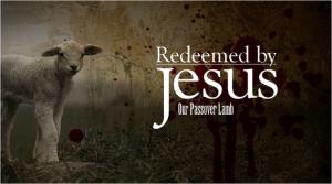 Redeemed Jesus Passover Lamb